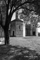 Viola__Pieve San Lorenzo_Settimo Vittone (TO)
