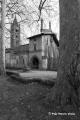 Viola__Buttigliera Alta (TO)_Sant'Antonino di Ranverso